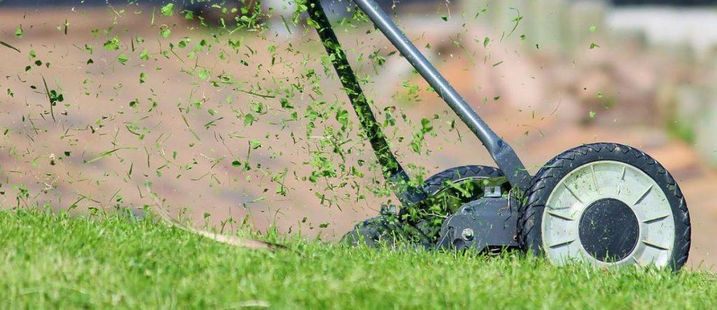 Jedną ze słabych stron Drzewa Yin jest wrażliwość na krytykę.  Koszenie trawy